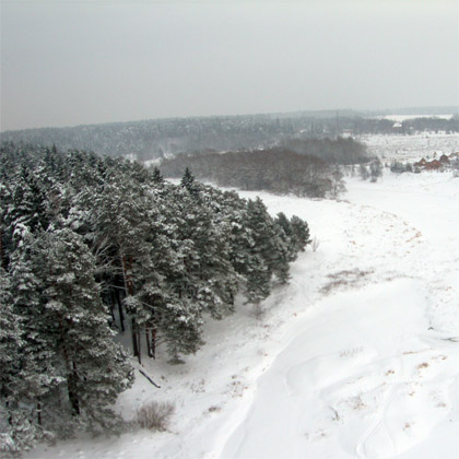 зимний полет над заснеженным лесом